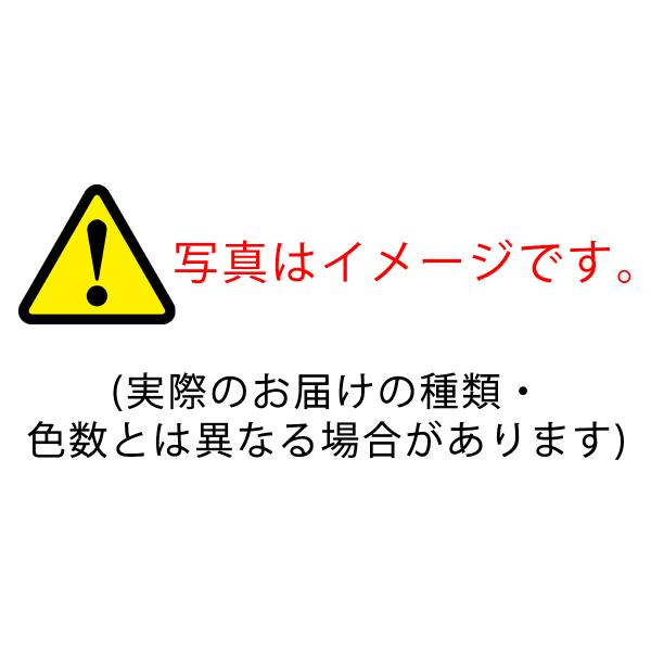 歯ブラシ 大人用  20本 福袋 MY歯ブラシ 歯科専売品 メール便送料無料|okuchi|03