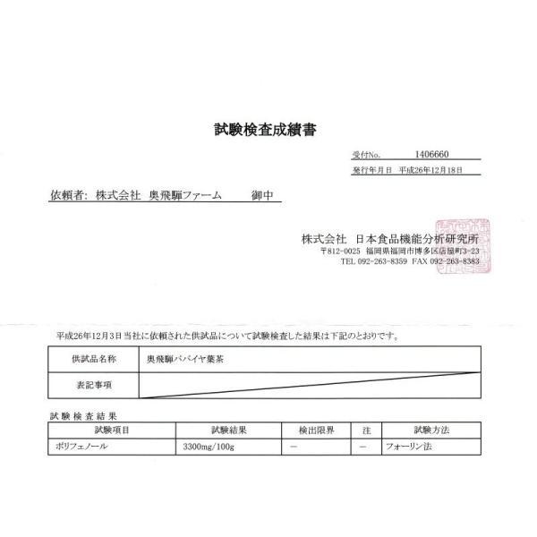 飛騨産のパパイヤ茶(パパイヤリーフ)50g okuhida-fram 04
