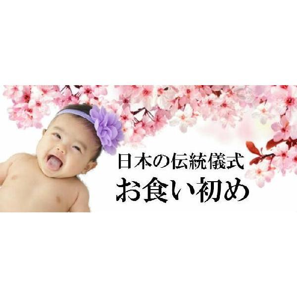 女の子 お食い初め 赤ちゃん 祝い膳食器セット 百日膳松竹梅(黒色)ギフト プレゼント oldnew 02
