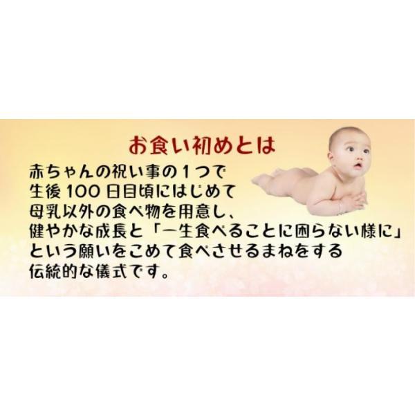 女の子 お食い初め 赤ちゃん 祝い膳食器セット 百日膳松竹梅(黒色)ギフト プレゼント oldnew 03