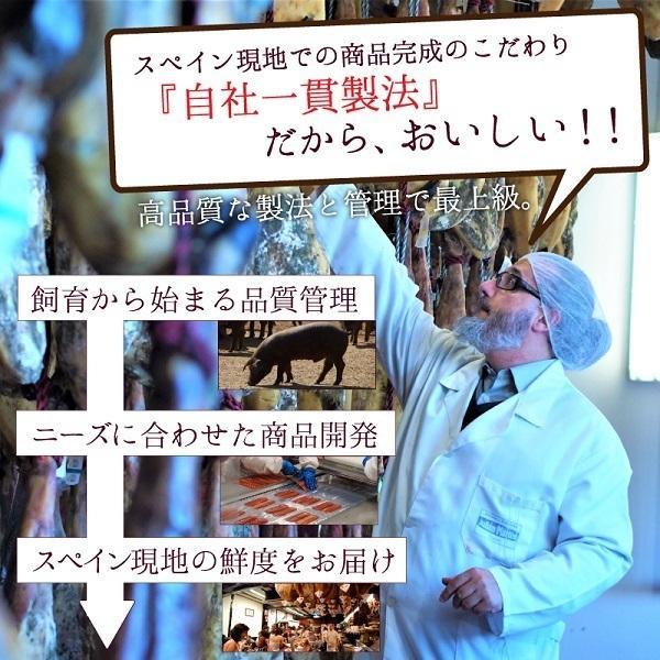 ポイント消化 訳あり セール イベリコ豚生ハム ハモンイベリコ24ヶ月以上熟成 送料無料 食品おつまみお試し|olive-no-mi|10