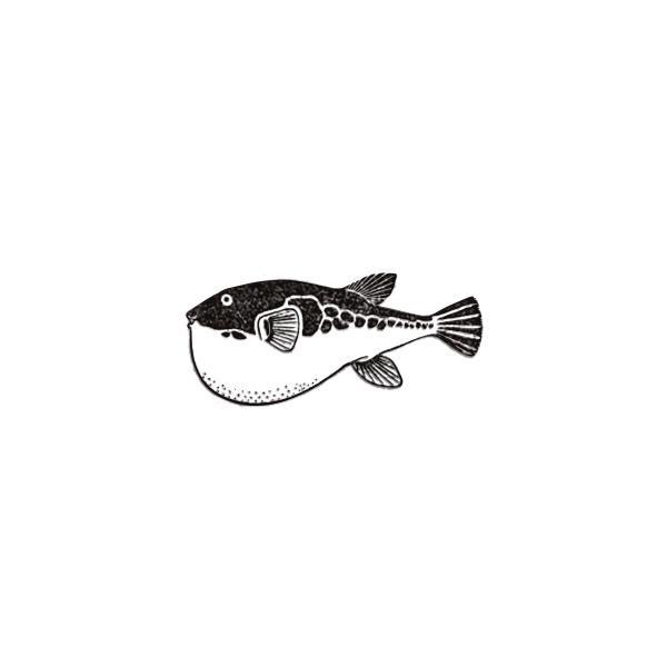アニマルスタンプ フグ 対象商品3点以上でメール便送料無料 ふぐ グッズ 魚 動物スタンプ 動物はんこ かわいい動物 雑貨 グッズ リアル おしゃれ