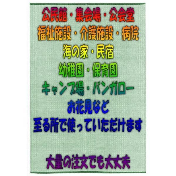 業務用PPござ 江戸間6畳 模様 江戸間6帖 水洗いできる花ゴザ ポリプロピレン敷物|omakase-factory|03