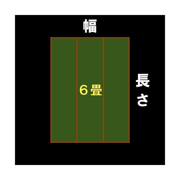 本間6帖 本間6畳 双目織り 上敷 ござ い草カーペット 自由に切れる上敷き 10段階で7ランクの品質 おまかせ工房 omakase-factory 11