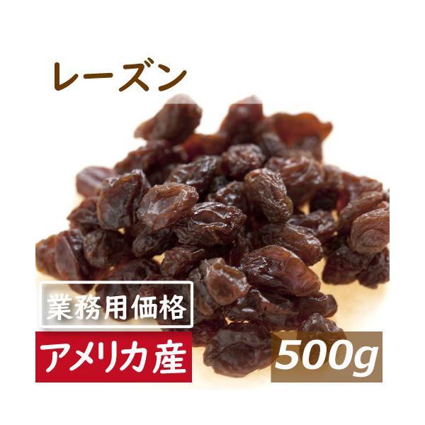 レーズン (アメリカ産) 500g チャック袋入り ポイント消化 グルメ