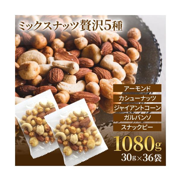 ミックスナッツ 塩味 贅沢5種 30gx36袋 小分け 赤穂の焼き塩でまろやか仕立て  アーモンド カシューナッツ クルミ
