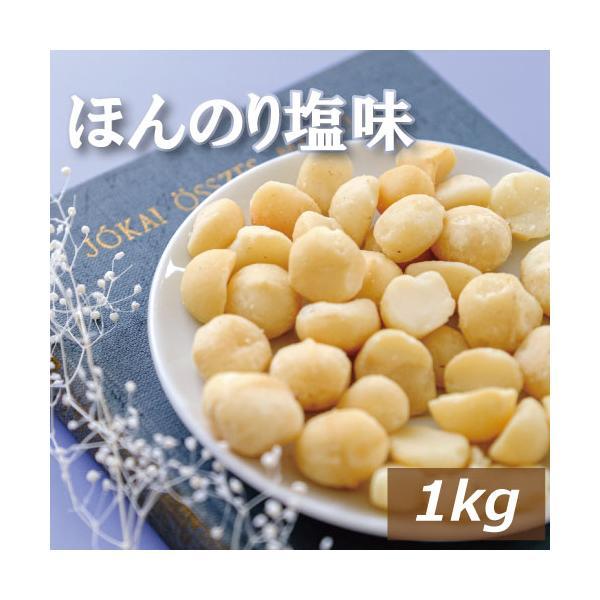ナッツ マカダミアナッツ ナッツ専門店の マカダミアナッツ ロースト 塩味 1kg  製造直売 グルメ