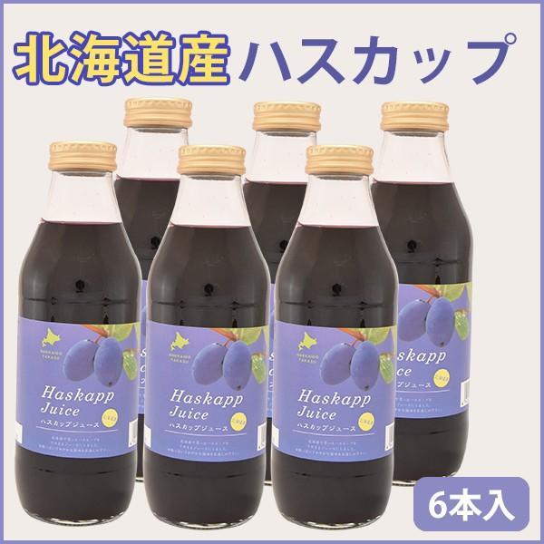 バイオアグリたかす ハスカップジュース 500ml 6本 北海道産 のし対応可