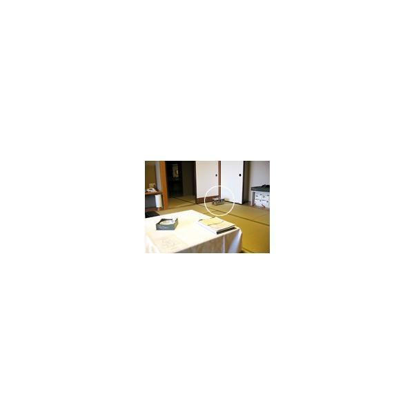 オゾン発生器  剛腕 GWD-1000FR(オフタイマータイプ) オーニット オゾン脱臭器 業務用:ホテル旅館・救急車・カーディーラー・レンタカーなど|omotesando-club|03