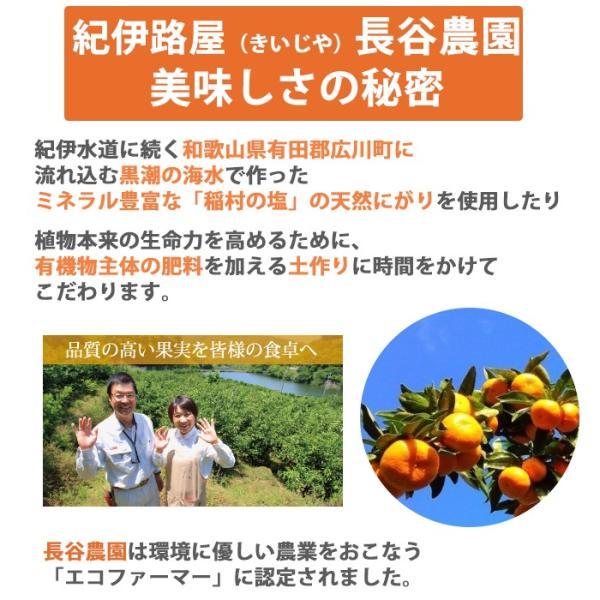 じゃばら ジュース 無添加 ストレート 果汁100% 720ml×3 紀伊路屋 ナリルチン豊富|omotesando-club|04