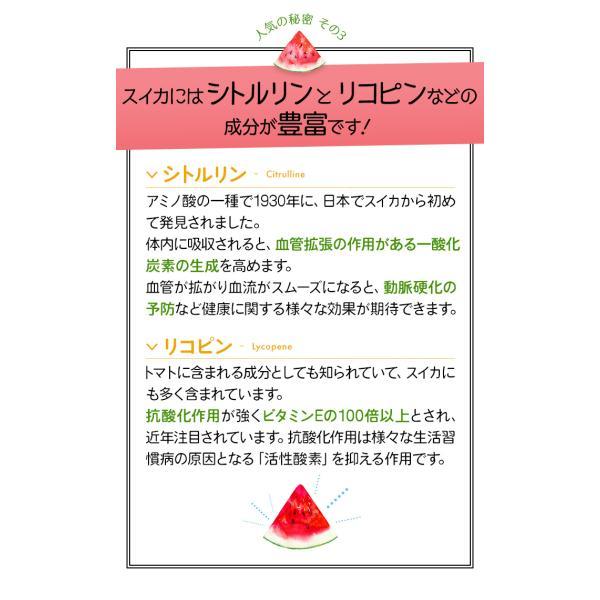 (26日9:59まで2倍)スイカ糖 尾花沢産のすいか糖 150g 3個セット お中元のし対応可|omotesando-club|06