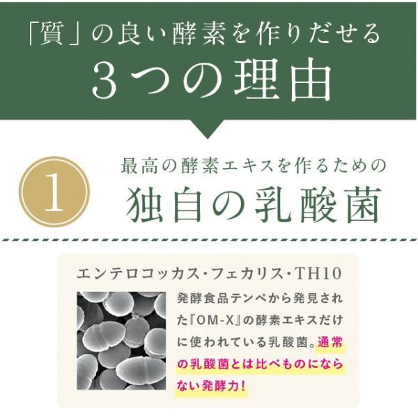酵素 サプリメント 生酵素 サプリ OM-X(オーエム・エックス)約7日分お試しセット 3粒×7包(21粒)オーエム・エックス公式ショップ|omx|14