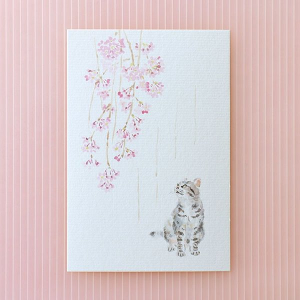 絵葉書 おしゃれ 和紙 季節の絵はがき 春 猫としだれ桜