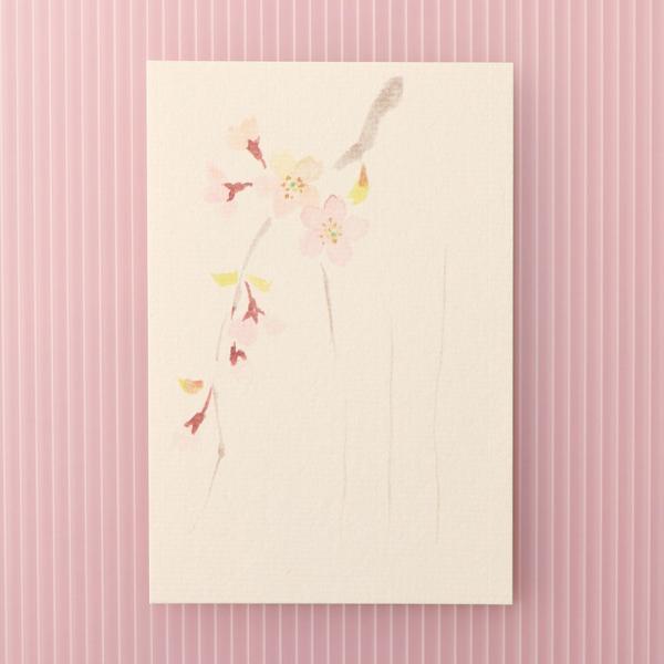 絵葉書 おしゃれ 和紙 季節の絵はがき 春 しだれ桜