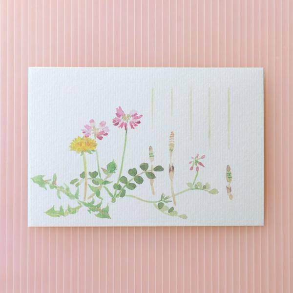 絵葉書 おしゃれ 和紙 季節の絵はがき 春 春草