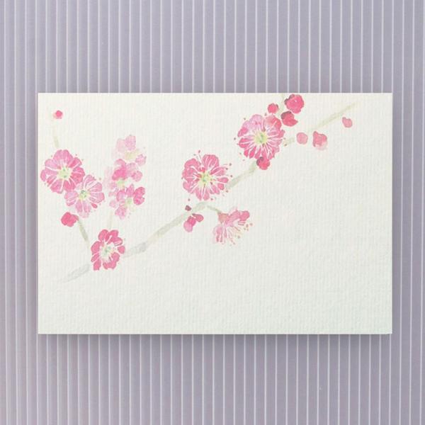 絵葉書 おしゃれ 和紙 季節の絵はがき 冬 紅梅