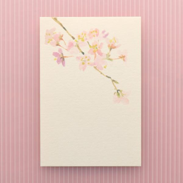 絵葉書 おしゃれ 和紙 季節の絵はがき 春 桜