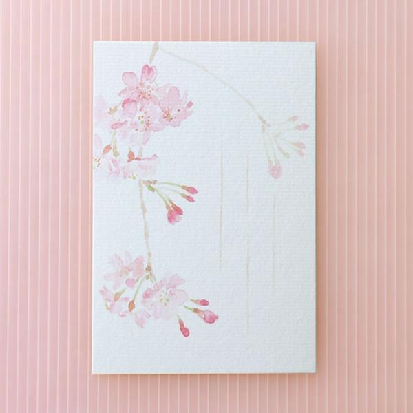 絵葉書 おしゃれ 和紙 季節の絵はがき 春 紅しだれ