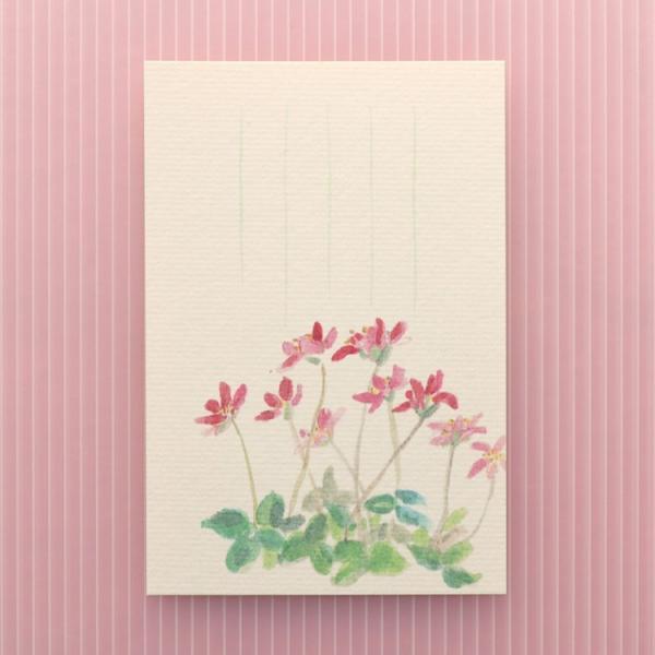 絵葉書 おしゃれ 和紙 季節の絵はがき 春 三角草