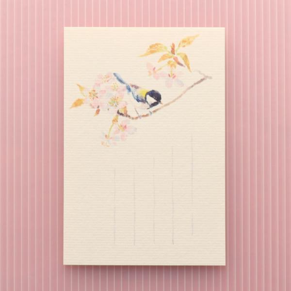 絵葉書 おしゃれ 和紙 季節の絵はがき 春 四十雀と山桜