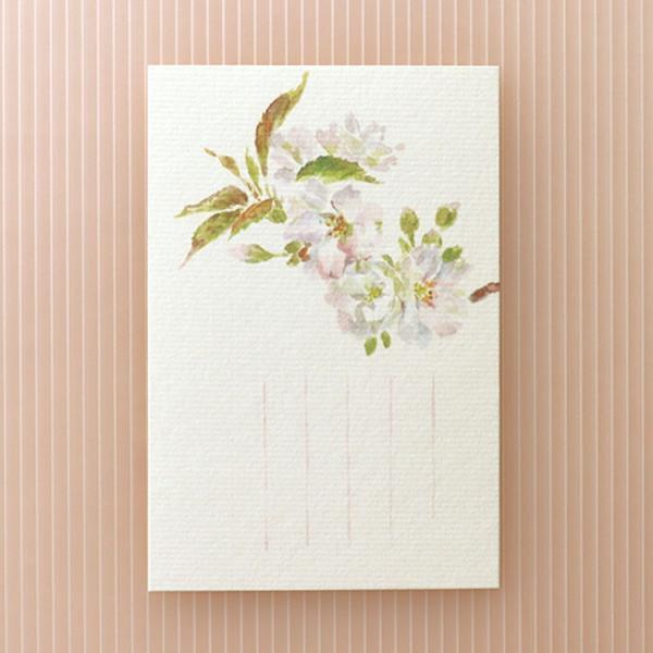 絵葉書 おしゃれ 和紙 季節の絵はがき 春 鬱金の桜