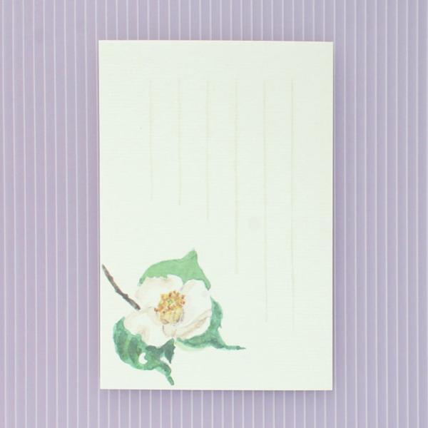 絵葉書 おしゃれ 和紙 季節の絵はがき 冬 白一重椿