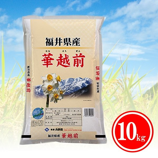 米 お米 10kg  送料無料 福井県産 コシヒカリに負けない高級米 訳あり