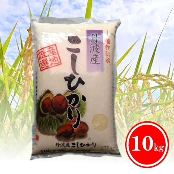 米 お米 10kg 送料無料 丹波産こしひかり コシヒカリ 訳あり