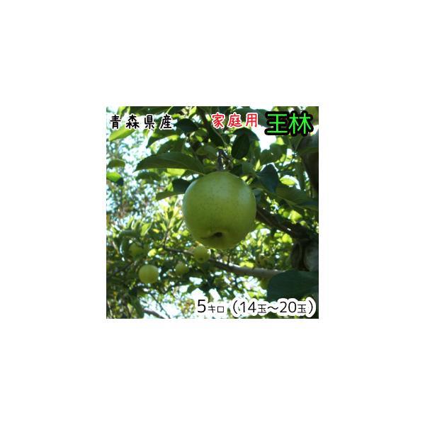 青森りんご☆送料無料☆家庭用王林5キロ14〜20玉 発送11月10日頃から