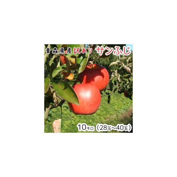 青森りんご 送料無料 訳ありりんごサンふじ10kg(10キロ)28〜40玉【りんごわけあり・リンゴ】発送11月20日頃から