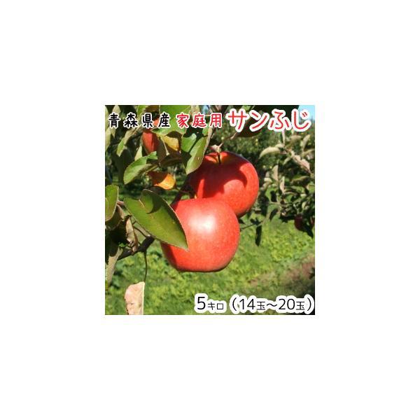 青森りんご 送料無料 家庭用サンふじ5キロ14〜20玉 発送11月20日頃から