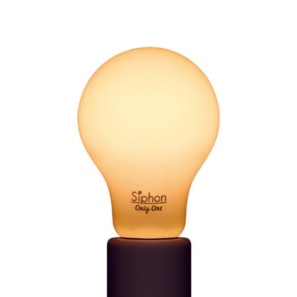 【フィラメントLED電球「Siphon」White ザ・バルブ LDF55】 E26 フロスト レトロ アンティーク インダストリアル ブルックリン  間接照明 ランプ|only1-led|04