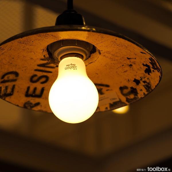 【フィラメントLED電球「Siphon」White ザ・バルブ LDF55】 E26 フロスト レトロ アンティーク インダストリアル ブルックリン  間接照明 ランプ|only1-led|07