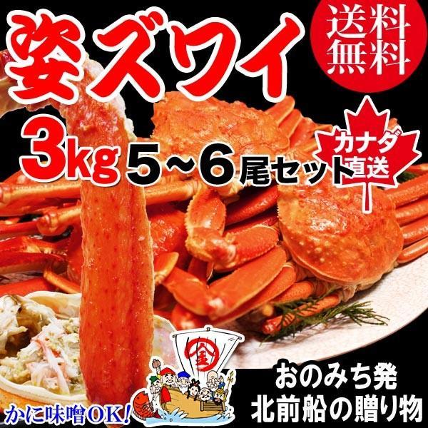カニ かに 蟹 グルメ ズワイ ボイル 姿 3kg 5~6尾 不揃い (カナダ産) ずわい かに味噌 鍋セット 材料 鍋 送料無料 セール