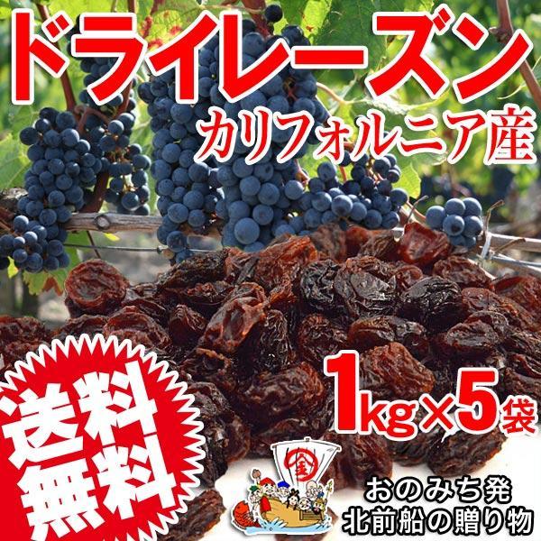 干しぶどう酢に ドライフルーツ レーズン(アメリカ産)1kg×5袋  メール便限定 送料無料