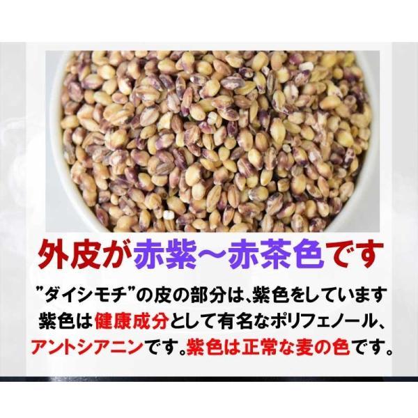 国産 もち麦 もちむぎ(ダイシモチ) 1kg 2017年度産 わけあり 訳あり βグルカン 送料無料|onomichi-marukin|10