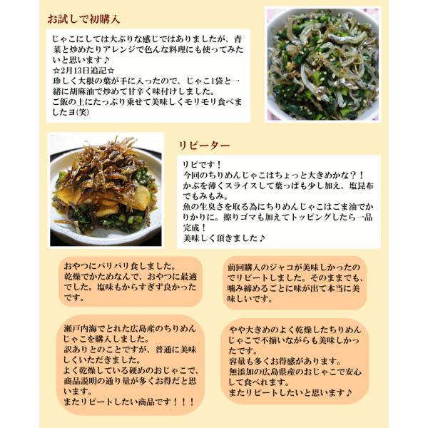 ちりめんじゃこ(パック セット)60g×3袋 広島産 ご飯のお供 送料無料   (魚介類 海産物)魚介 魚 onomichi-marukin 10
