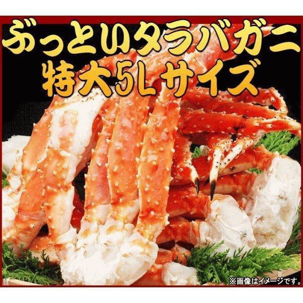 タラバガニ 2kg タラバ 特大タラバ蟹 5L 合計約2kg(正味1.6kg) たらば蟹 /シュリンク 送料無料|onomichi-marukin|02