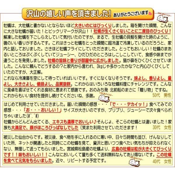 海鮮 グルメ 牡蠣 2kg かき 広島県産 (特産品 名物商品) 牡蠣) 広島カキ2k g《1kg(正味850g)×2袋》 広島産 送料無料 セール 鍋|onomichi-marukin|09