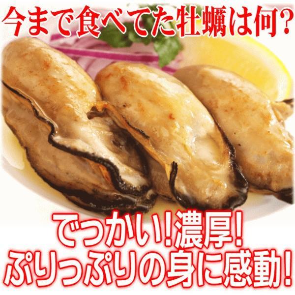海鮮 グルメ 牡蠣 2kg かき 広島県産 (特産品 名物商品) 牡蠣) 広島カキ2k g《1kg(正味850g)×2袋》 広島産 送料無料 セール 鍋|onomichi-marukin|03