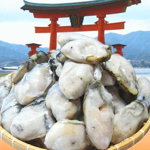 海鮮 グルメ 牡蠣 2kg かき 広島県産 (特産品 名物商品) 牡蠣) 広島カキ2k g《1kg(正味850g)×2袋》 広島産 送料無料 セール 鍋|onomichi-marukin|06