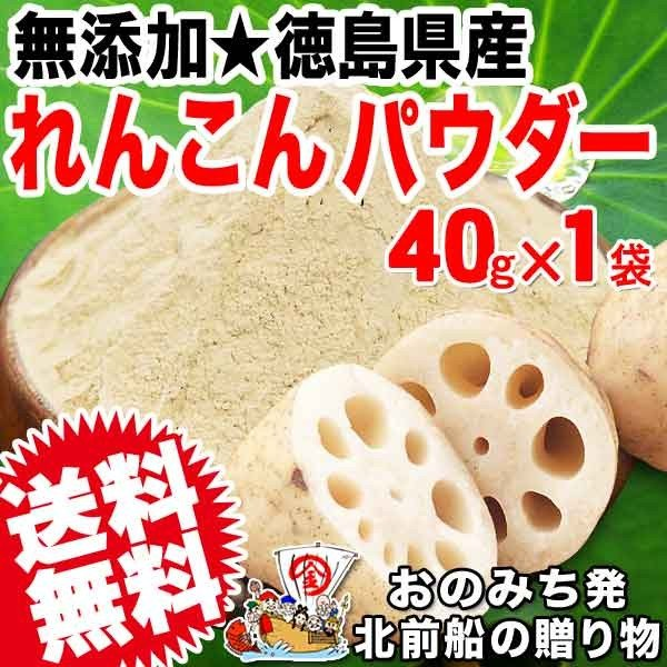お試し れんこんパウダー レンコン粉末 パウダー 国産 無添加 40g×1袋入り 徳島県産 送料無料