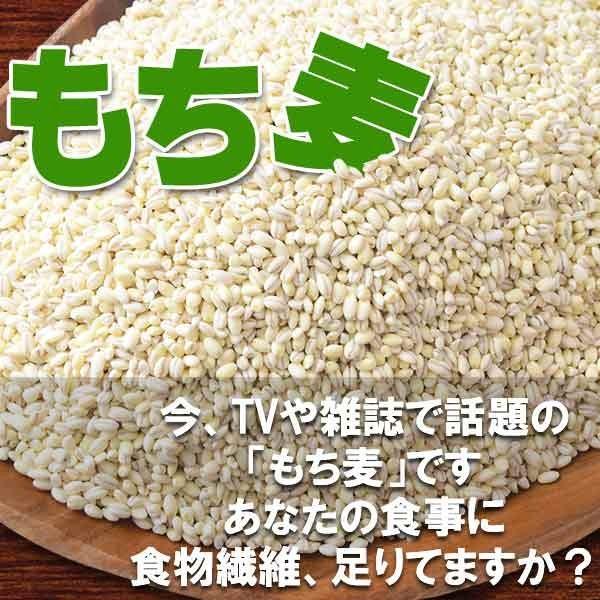 (わけあり 訳あり)もち麦 大麦 もちむぎ 500g×1袋 βグルカン 送料無料 セール スーパーフード|onomichi-marukin|04