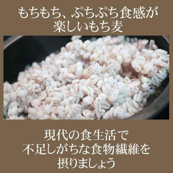 (わけあり 訳あり)もち麦 大麦 もちむぎ 500g×1袋 βグルカン 送料無料 セール スーパーフード|onomichi-marukin|05