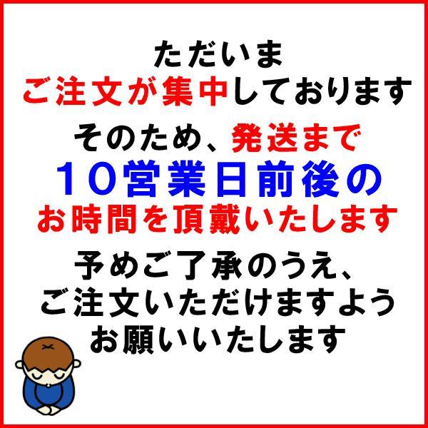 そばの実 国産(北海道産) 食品 ソバ 蕎麦 むき実・ぬき実 500g×1袋 送料無料 ※2017年新物 セール|onomichi-marukin|02