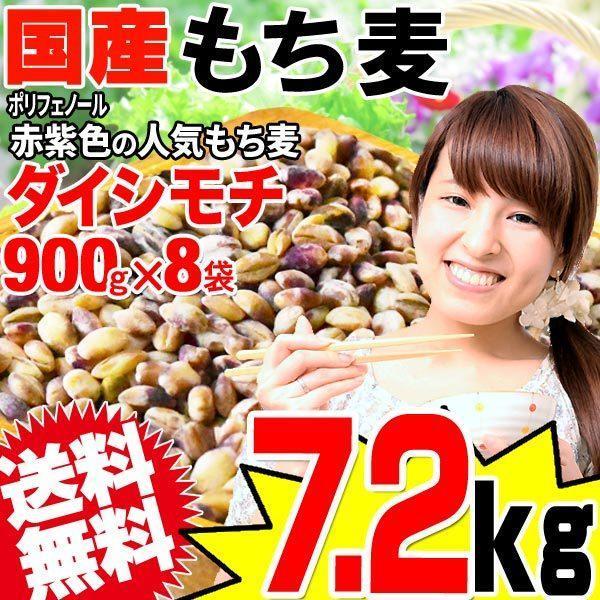 もち麦 国産 もちむぎ(ダイシモチ) 7.2kg(900g×8袋) 令和2年度産 レジスタントスターチ βグルカン わけあり 訳あり 送料無料