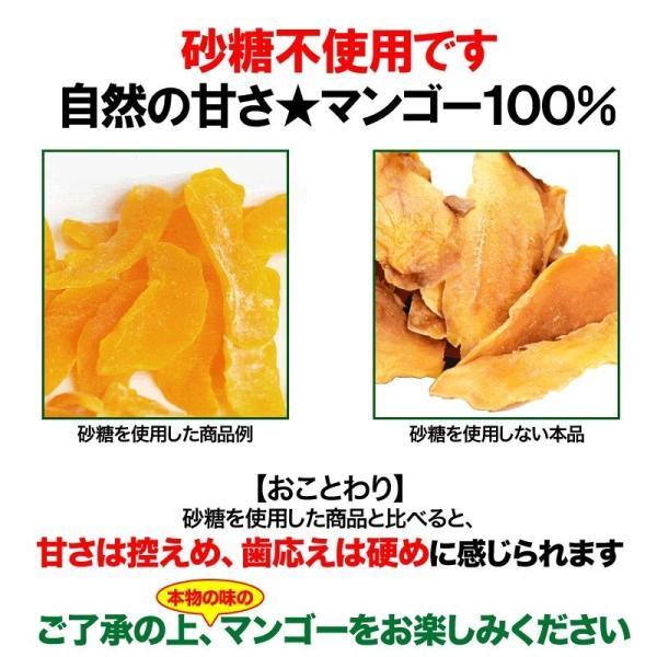 無添加 ドライマンゴー 砂糖不使用 100g×1袋 同梱2袋(4000円、クーポン利用で2000円)で+1袋おまけ付きに メール便限定送料無料|onomichi-marukin|09