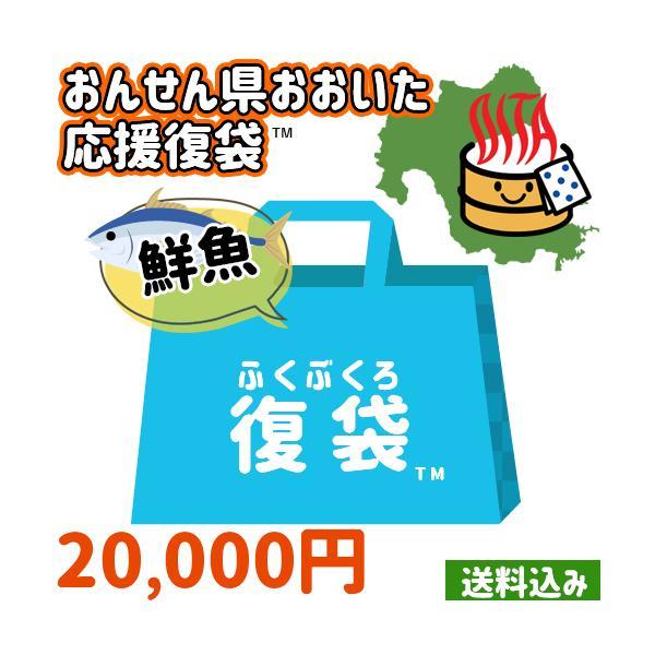 【応援企画】おんせん県おおいた ふっこう復袋(福袋) 鮮魚詰め合わせセットB 20,000円トキハインダストリー 【送料無料】