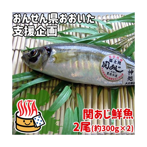 おんせん県おおいた 活締めした新鮮な関アジ 鮮魚 2尾(約300g×2) 脂がのった関あじ 佐賀関漁港から直送 富士見水産