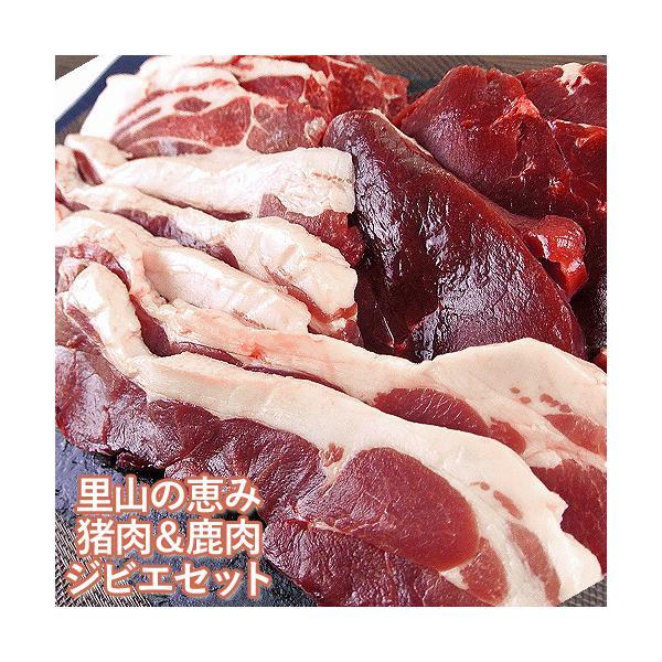 国東半島ジビエ 猪肉300g 鹿肉300g 猪肉肩ロース300g 山香アグリ【送料無料】